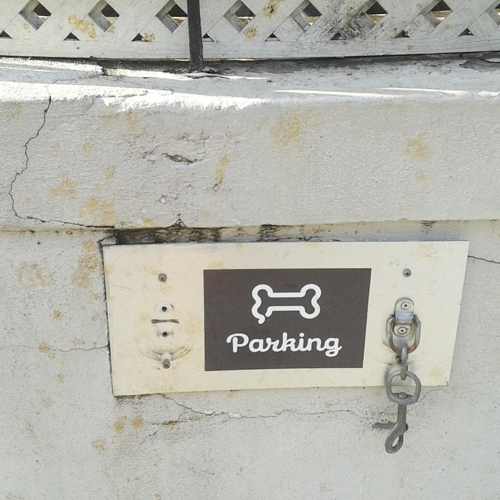 shakeshack_parking