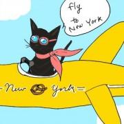 プレコ特典!ニューヨーク行き特別格安航空券をゲットしよう!